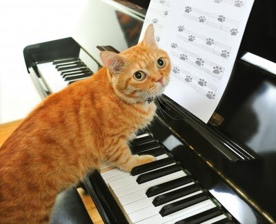 Why I Don't Play the Piano Part 1